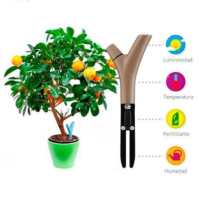 Monitoriza salud plantas