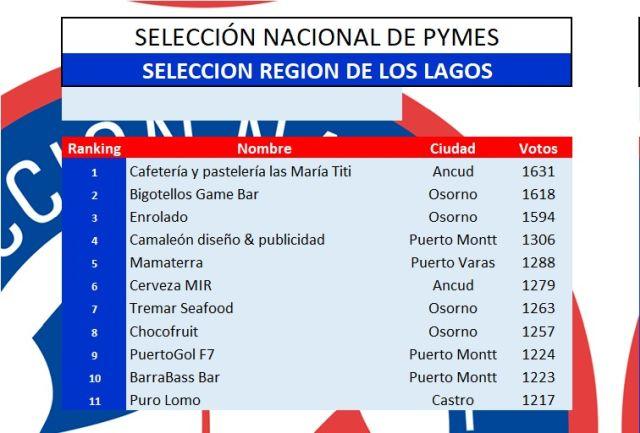 Pymes Región de Los Lagos