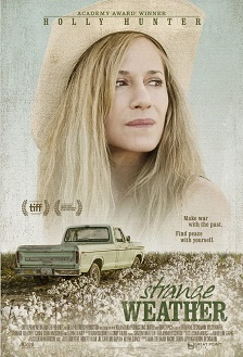 Strange Weather (2017) Dual Áudio / Dublado WEBRip 720p – Torrent Download