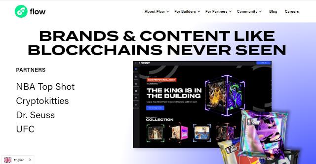 Screenshot Halaman Website Flow (FLOW) Cryptocurrency