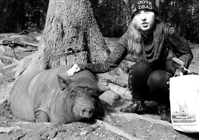 Schweineliebe