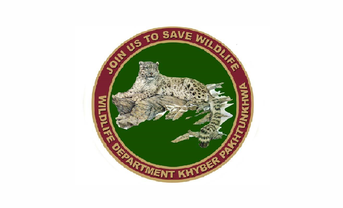 www.kpta.pk - Wildlife Department KPK Jobs 2021 in Pakistan
