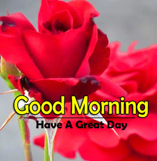 New Good Morning 4k Full HD Images Download For Daily%2B87