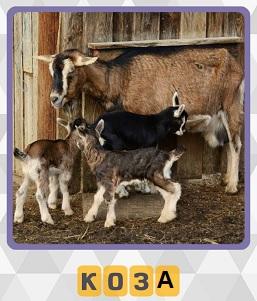 600 слов стоит коза вместе со своими козлятами 8 уровень