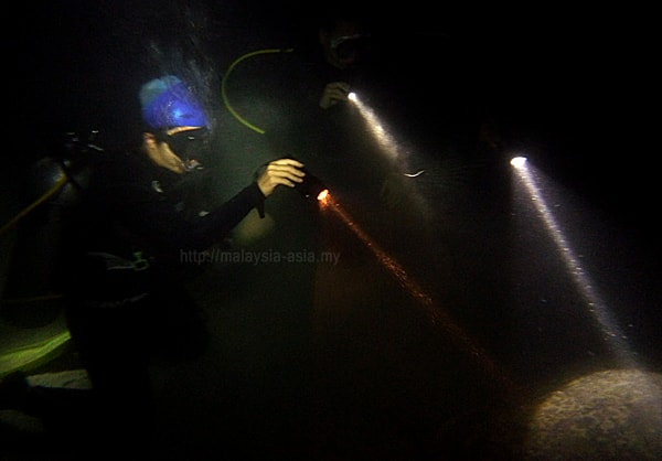 Malaysia Night Diving
