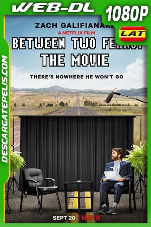 Entre dos helechos: La película (2019) 1080p WEB-DL Latino – Castellano – Ingles