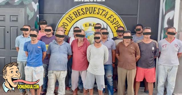 Policía detuvo a 16 peligrosos delincuentes que robaban alimento para pollo