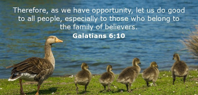 Therefore, as we have opportunity, let us do good to all people, especially to those who belong to the family of believers.