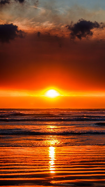 Sunset Sky covers the Golden Sea