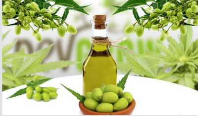 Properties of neem oil