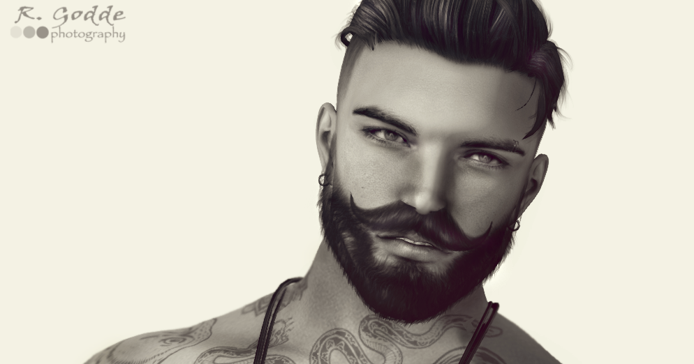 15 Things you Shouldn't do with your Beard   The SL Registry