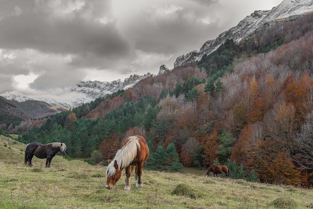 Sierra de Zuriza