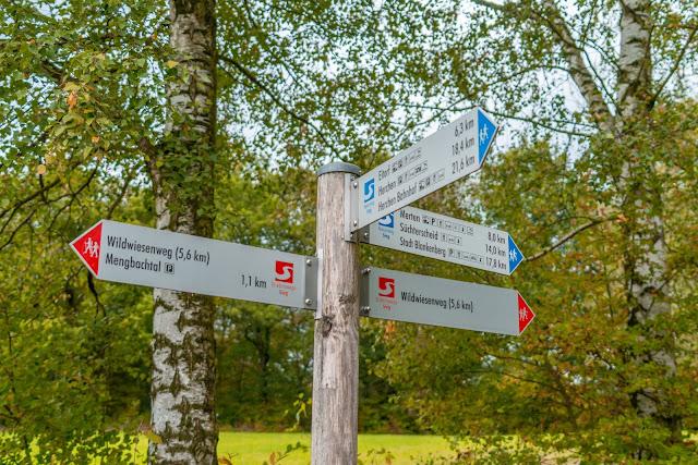 Wildwiesenweg – Eitorf | Wandern in der Naturregion-Sieg | Erlebniswege Sieg 17