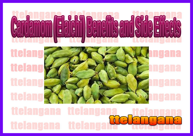 Cardamom (Elaichi) Benefits and Side Effects