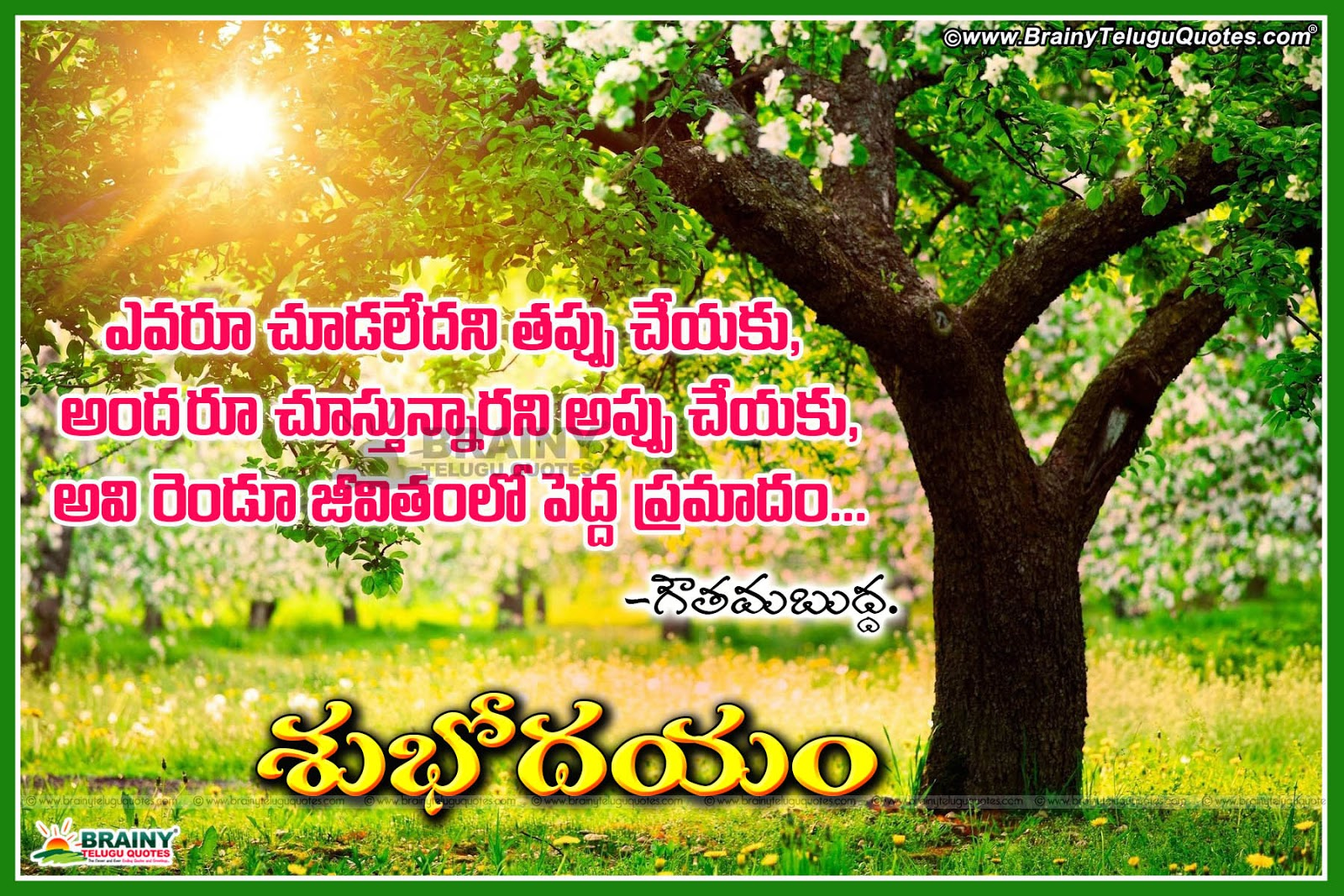 The 50 Best Good Morning Quotes Of All Time: Subhodayam Images Telugu Good Morning 3D Wallpapers