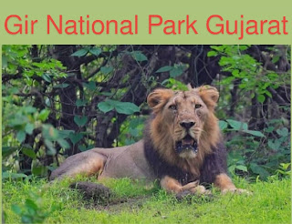 Gir National Park in Hindi