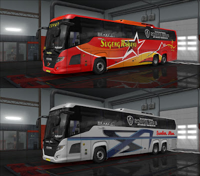 Skinpack Scania Touring HD