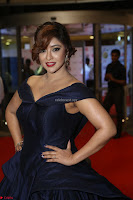 Payal Ghosh aka Harika in Dark Blue Deep Neck Sleeveless Gown at 64th Jio Filmfare Awards South 2017 ~  Exclusive 080.JPG