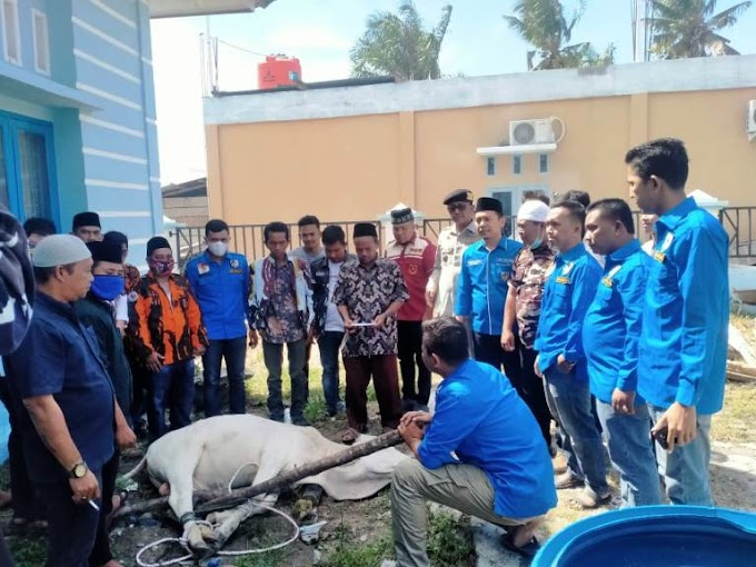 DPD KNPI Paluta Sumatera Utara; Gelar Qurban Bersama Pemuda