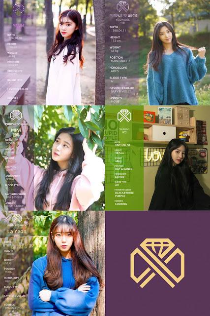 Purplebeck 퍼플백 debut