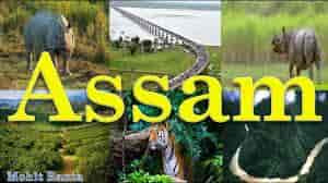 top-colleges-in Assam