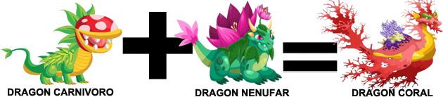 como sacar el dragon coral en dragon city combinacion 2