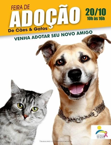 São Pedro da Aldeia recebe feira de adoção de cães e gatos neste sábado (20/10)