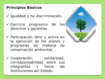Principios Básicos de la Brigada Ambiental