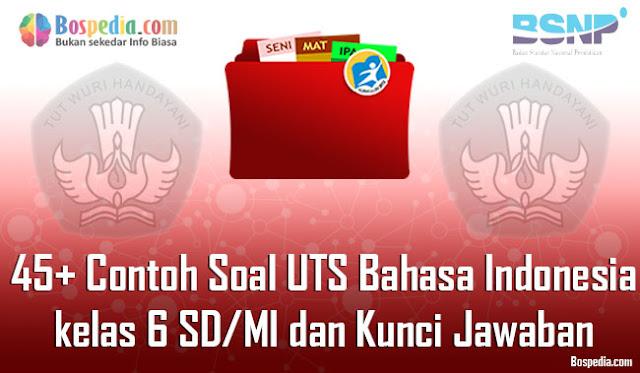 45+ Contoh Soal UTS Bahasa Indonesia kelas 6 SD/MI dan Kunci Jawaban