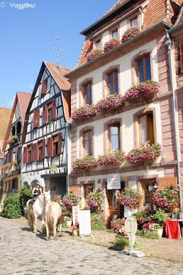 Il centro villaggio di Bergheim