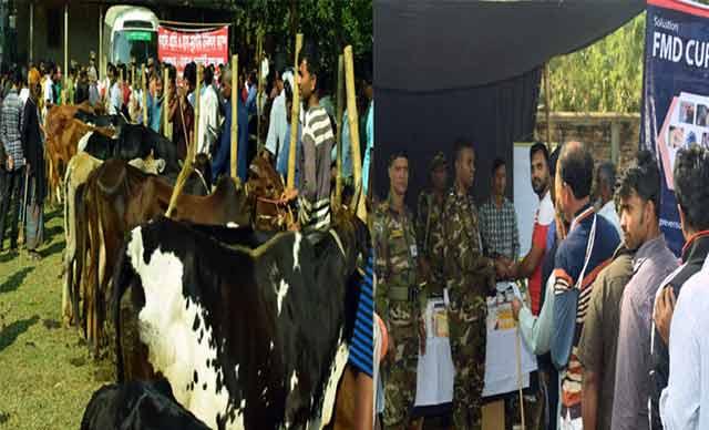টাঙ্গাইলের মির্জাপুরে সেনাবাহিনীর উদ্যোগে গবাদি প্রাণির চিকিৎসা সেবা
