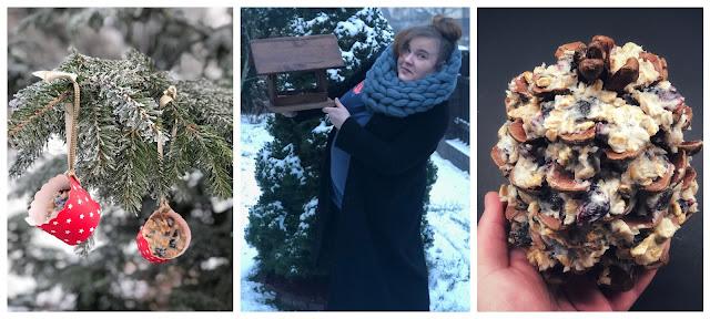 Dokarmianie ptaków zimą - czy, jak i czym dokarmiać?