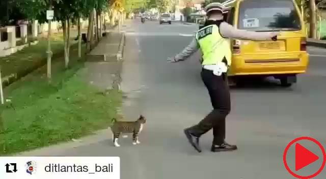 Gud police.