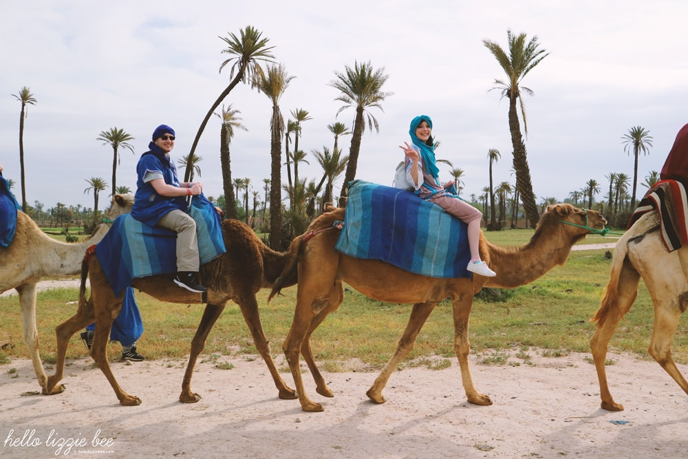 camel riding, marrakesh, marrakech