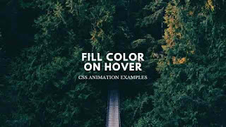 text fill color animation