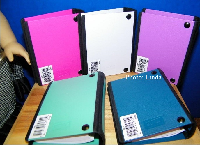 living a doll s life review doll notebook binders staples