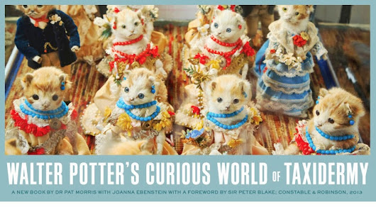 Penguin USA Blue Rider Press's edition of 'Walter Potter's Curious World of Taxidermy', April 2014.