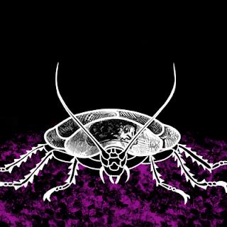 La supervivencia de las cucarachas