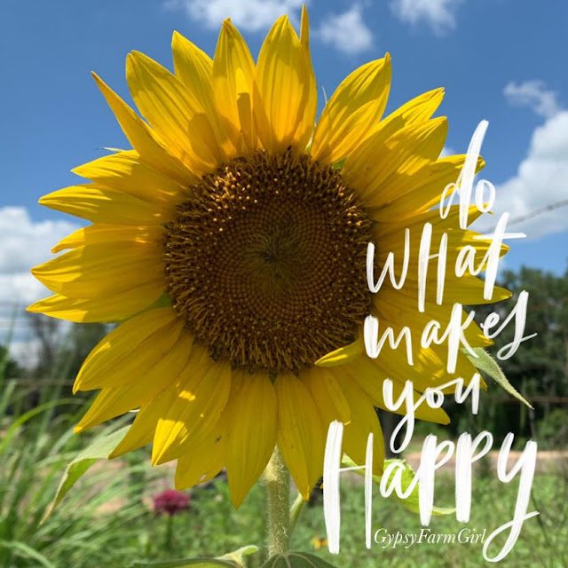 sunflower picture with happy quote