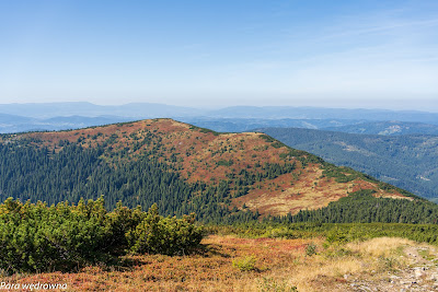 Grzbiet Małej Babiej Góry ze ścieżki na Diablak