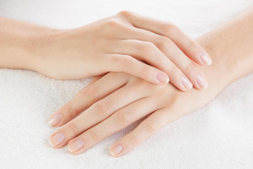 Budowa naturalnego paznokcia