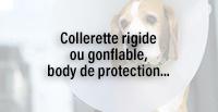 Collerette rigide ou gonflable, body de protection...