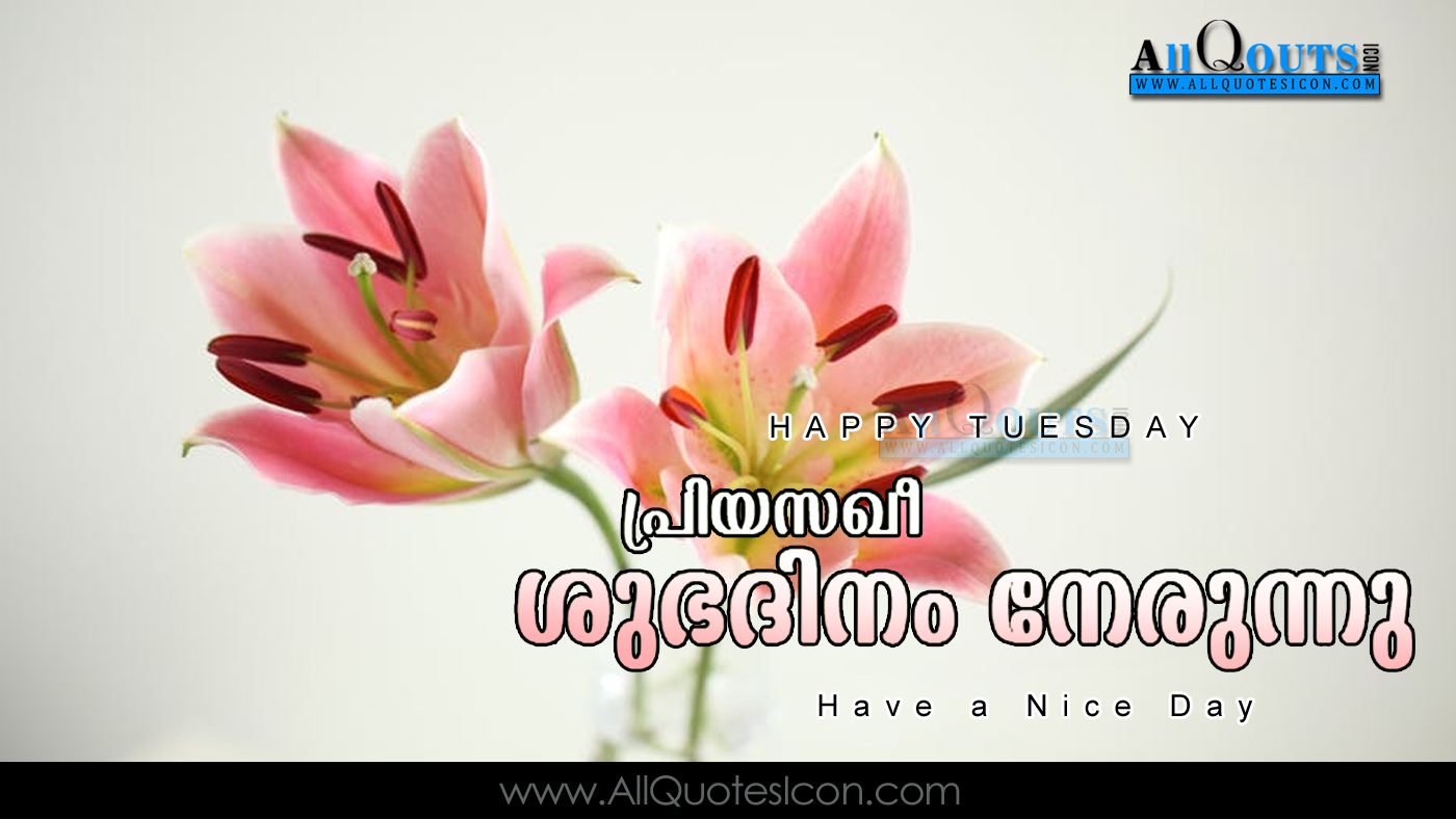 Happy tuesday images good morning greetings in malayalam pictures malayalam good morning quotes wshes for whatsapp life m4hsunfo