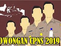 Ingin Daftar CPNS 2019? Perhatikan Syarat Dokumen Penting Ini!