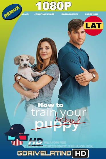 How to Pick Your Second Husband First (2018) REMUX 1080p Latino-Ingles MKV