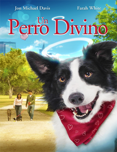 Ver Un perro divino (Angel Dog) (2011) Online