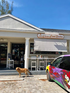 dog in front of pecking order on sanibel