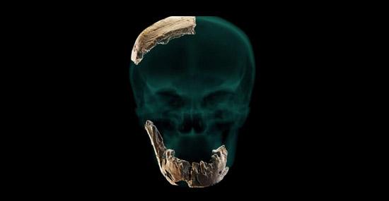 Novo Tipo de Humano antigo desconhecido é descoberto em Israel - Capa