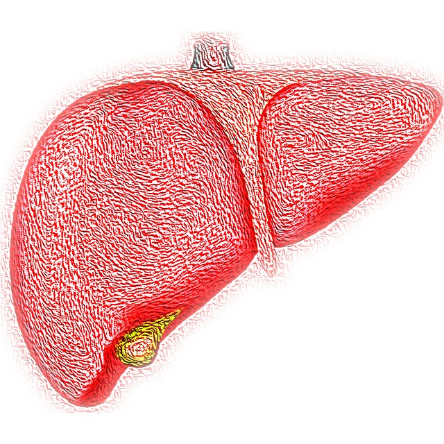 Hepatitis: Types, Symptoms, and Treatment