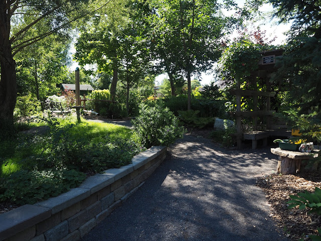 Dappled Shade in Unitarian Garden Urban Retreat